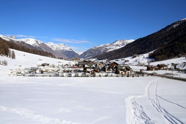 Camping stella alpina livigno webcam